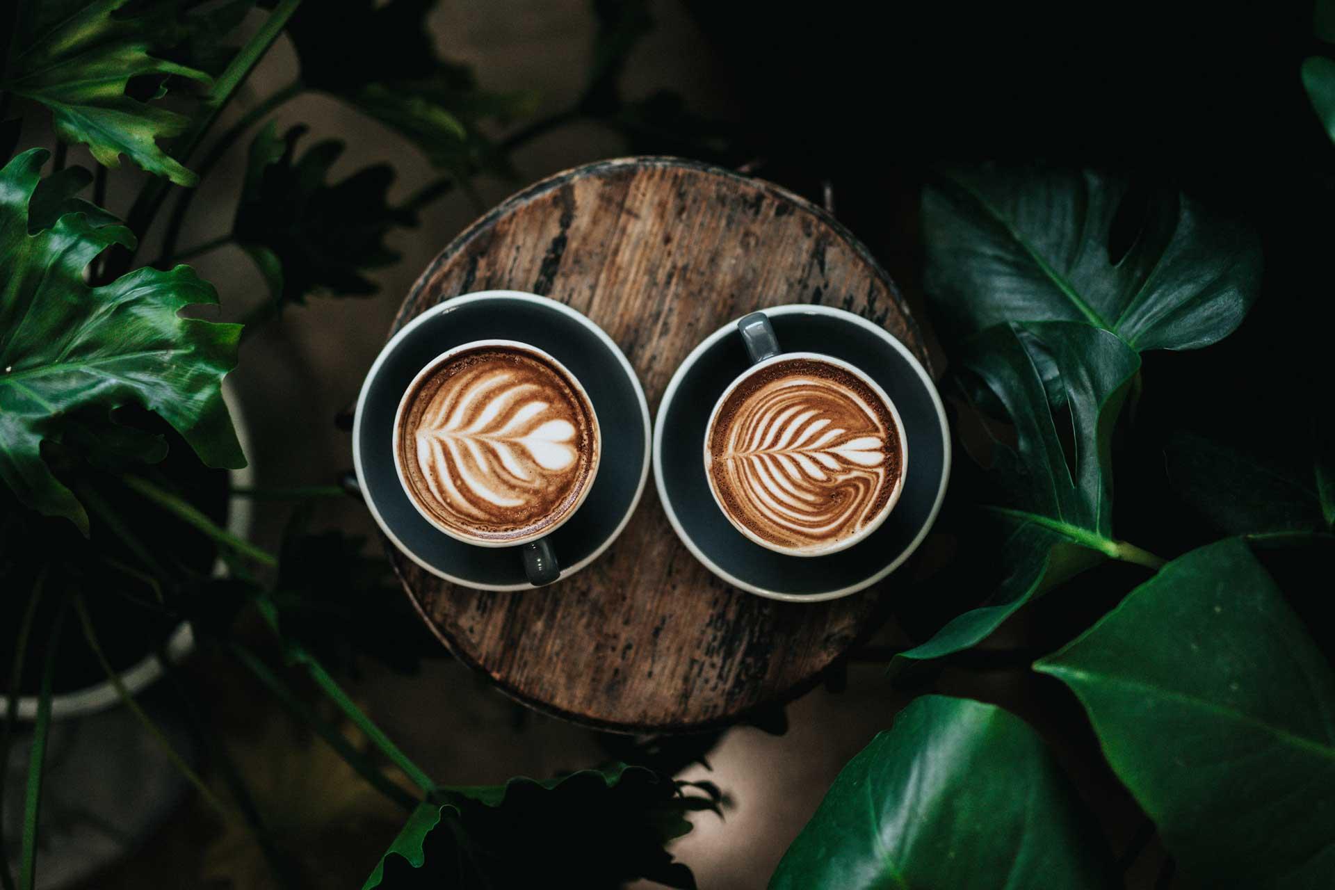 two coffee latte on log